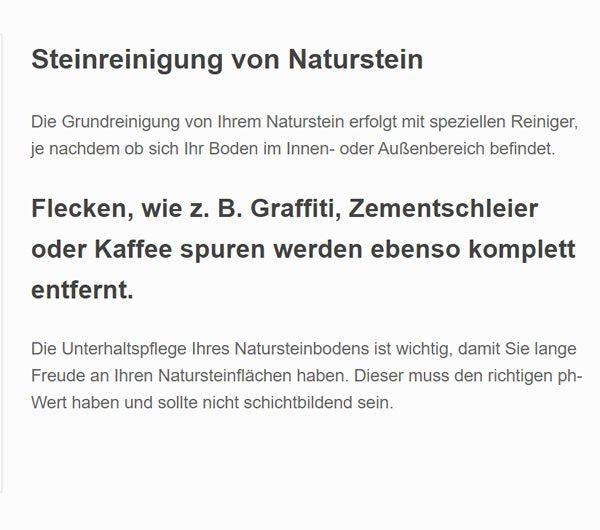 Steinreinigung Naturstein aus  Hamburg